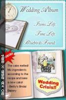 Dream Day: Wedding Destinations [EUR] [NDS]