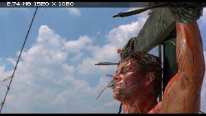 Киборг / Cyborg (1989) BDRemux 1080p
