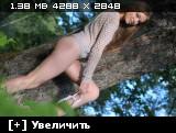 http://i4.imageban.ru/thumbs/2013.08.24/35f9fd24e8c08a01af61199f0f2b3431.jpg