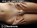 http://i4.imageban.ru/thumbs/2014.01.26/1e2e7c5a0dc5187d8dbdb6a87c7a50e1.jpg