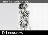 http://i4.imageban.ru/thumbs/2014.01.26/4abbccd1117fd743c7b30db372c96498.jpg