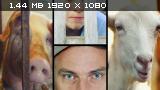 http://i4.imageban.ru/thumbs/2014.05.01/88f212e7b53ade9f29e20151e766e0cb.png