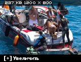 http://i4.imageban.ru/thumbs/2014.07.04/a2d432b08a1ec1ccd4bfeb4a76ee0d27.jpg