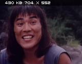 ����� ������� �������� / Fist of golden monkey (1983) DVDRip   VO