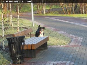 http://i4.imageban.ru/thumbs/2014.11.10/788b499dcc374eb08ac6481e2a3c74ea.jpg