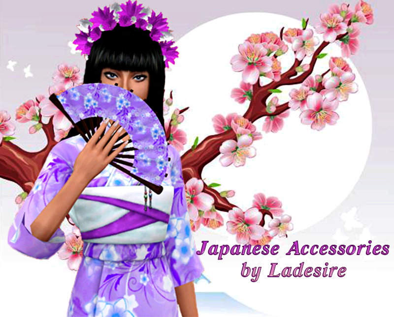 Japanese Accessories by Ladesire