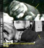 https://i4.imageban.ru/thumbs/2019.04.05/72e7c8a620e8d2a4b62e2c7babbdcf53.jpg