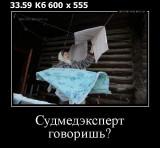 https://i4.imageban.ru/thumbs/2019.07.01/908fb6fd6f5805506f96b50911b48814.jpg