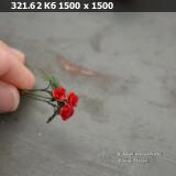 https://i4.imageban.ru/thumbs/2021.02.19/4e4956cdcaa47bff036d13eda6eefe73.jpg