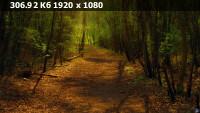 14481fbca5a0572e0cc948b1b572b74a.webp