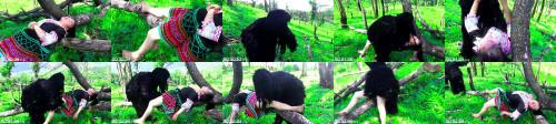 df20896b99d98b49d3b11cc3e146e6bf - Gorillas Catch Girl In Forest Wild Animals